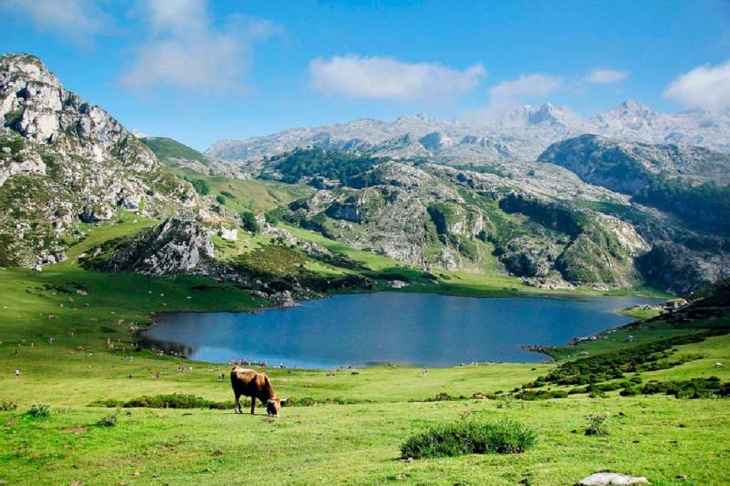 Planes imprescindibles en Asturias